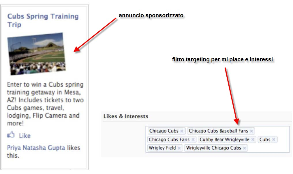 Facebook Ads: Case Study Arizona